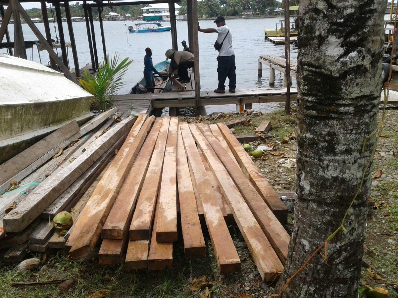 Confiscan madera en manglares de Isla Bastimentos - Crítica