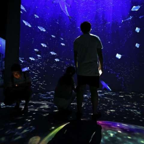 """Los visitantes miran en una instalación de arte audiovisual titulada """"Ocean Dive"""" durante la exhibición de Aquarium by Naked en el Guardian Art Center en Beijing. AP"""