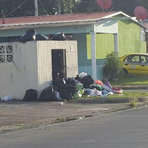 Las bolsas de basura ya no caben en las tinaqueras.  /  Foto: Rocío Martins