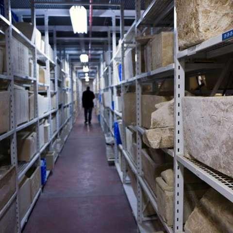 Vista parcial de algunas de las colecciones de ossarios de piedra que se guardan en el Almacén de Tesoros Nacionales, en Bet Shemesh, Israel. EF
