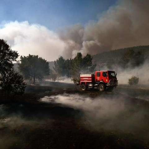 Bomberos combaten el fuego en Castelo, Maçao (Portugal). Más de 1.600 bomberos trabajan hoy para controlar las llamas de cuatro grandes fuegos declarados en los distritos de Castelo Branco y Portalegre, en el centro de Portugal. /  Foto: EFE