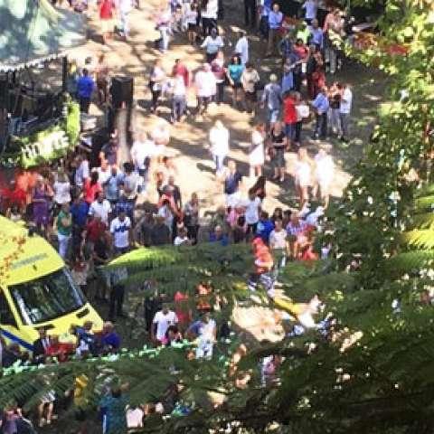 Al parecer el árbol cayó mientras una multitud se reunía como parte de un festival religioso. /  Foto: AP
