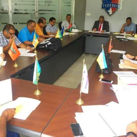 Reunión plenaria Foto: Fedebeis