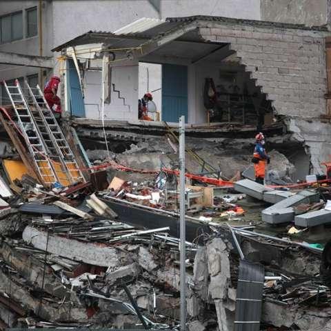 Rescatistas de la brigada del Japón y su perro continúan las labores de búsqueda de cuerpos y personas con vida en el edificio de Álvaro Obregón.  /  Foto: EFE