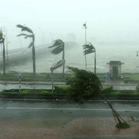 En el sur de Japón, el tifón estaba causando además de lluvias torrenciales, vientos de hasta 252 kilómetros por hora en la mañana del domingo. EFE