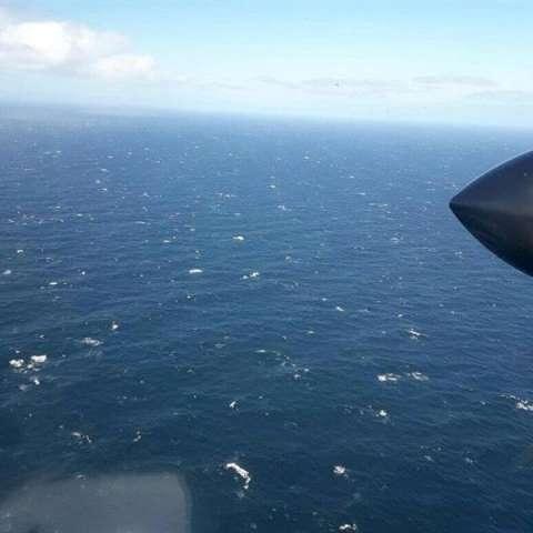 Fotografía cedida por la Armada Argentina ayer, que muestra la operación de un avión en la búsqueda del submarino ARA San Juan. EFE