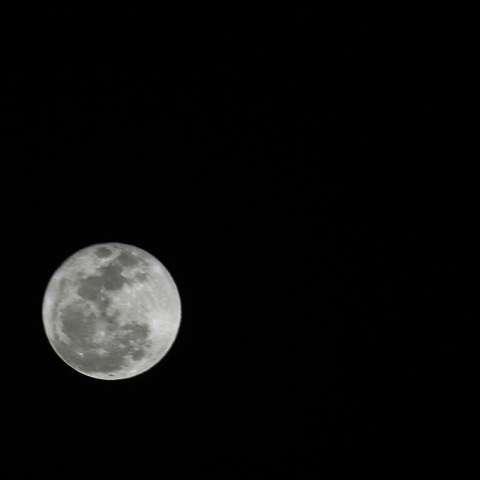 Así de hermosa se apreció la superluna desde la vía Tumba Muerto, en ciudad de Panamá.  /   Foto: Edwards Santos