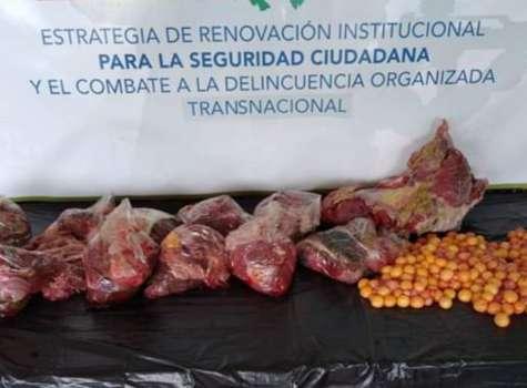 Investigan a dos hombres por comercialización de carne y huevos de tortuga
