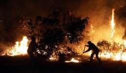 Fotografía tomada el pasado 19 de enero en al que se registró a un grupo de bomberos chilenos al combatir un incendio forestal en la localidad de Cauquenes, a 357 kilómetros al sur de Santiago de Chile. EFE/Archivo