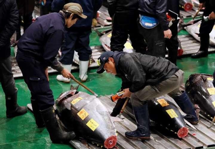 Es tradicional que en la primera subasta del año se alcancen precios extremadamente altos en Tokio. EFE