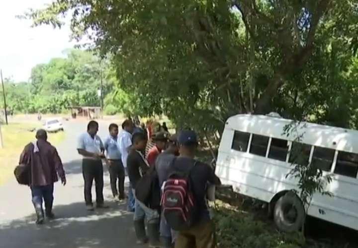 Bus repleto de trabajadores choca contra árbol