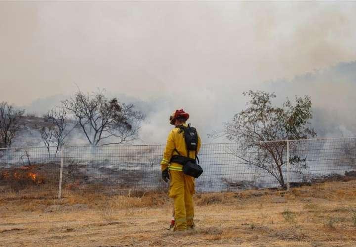Ante el rápido avance del fuego, las autoridades ordenaron como medida de precaución que se evacuaran diferentes áreas de los condados de Shasta, Trinity y Siskiyou. EFE