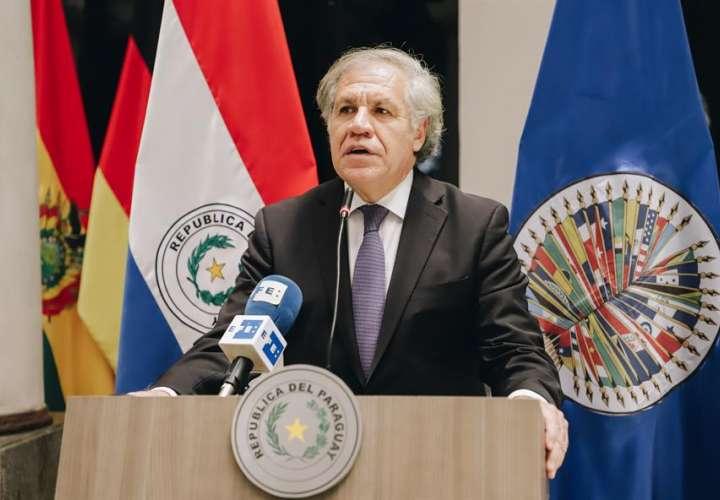 """Jefe de la OEA dice que la """"única opción"""" que tenía Evo Morales era renunciar"""