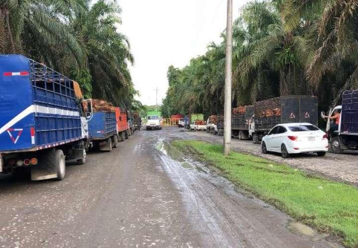 Un herido en robo a mano armada en una extractora de aceite en Chiriquí