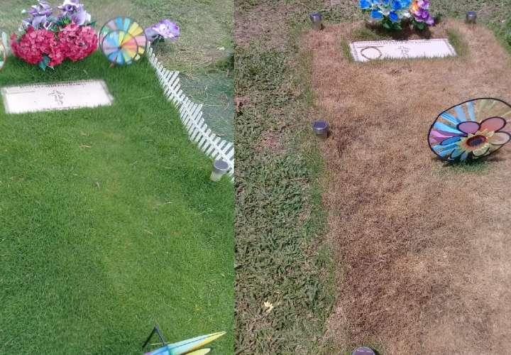 ¿Qué le pasó a la hierba alrededor de la tumba de víctima del hotel El Panamá?