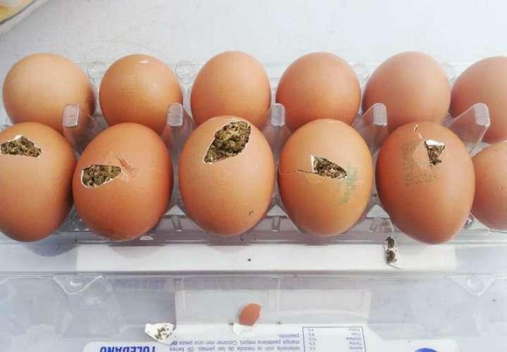 Huevos preñados de droga intentan ingresar a la cárcel