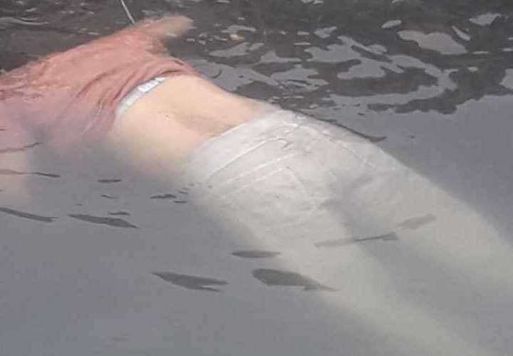 Momentos en que dieron hallazgo del cadáver en la bahía. Foto: Redes Sociales