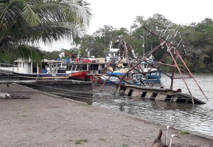 Buscan explotar el puerto Pedregal