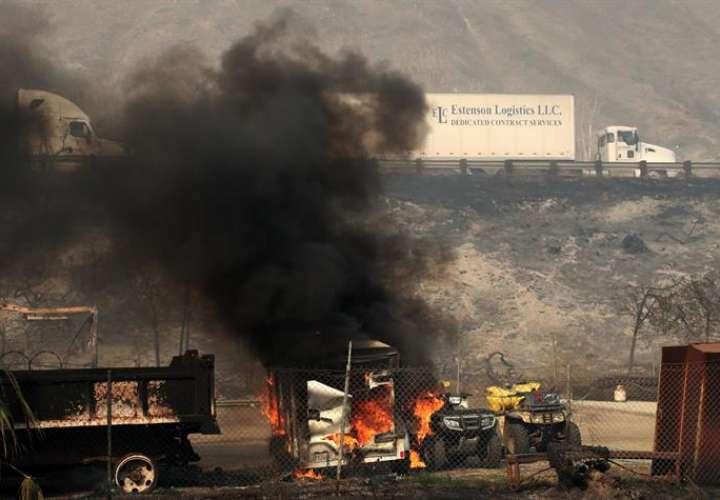 Las autoridades consideran que estos últimos fuegos podrían tener un coste económico de más de 25 millones de dólares para el sur de California, donde numerosos cultivos de cítricos han sido reducidos a cenizas, según los cálculos preliminares. EFEArchivo