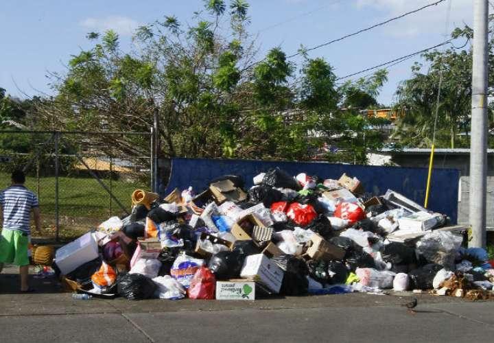 El servicio de recolección en este momento no es el mejor. /  Foto: Edwards Santos