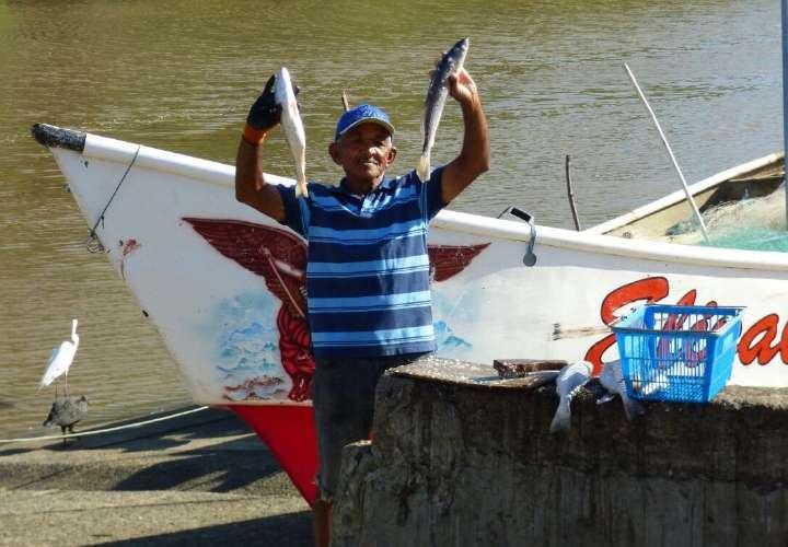 Bajan ventas de mariscos de pescadores herreranos