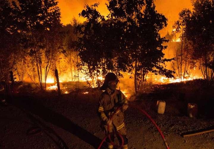 Según datos gubernamentales, de diciembre a marzo los incendios forestales han afectado una superficie de 41.742 hectáreas, un 39 % más que a igual fecha del año pasado, mientras la cantidad de siniestros alcanza a 4.206, un 6 % más. EFE/Archivo