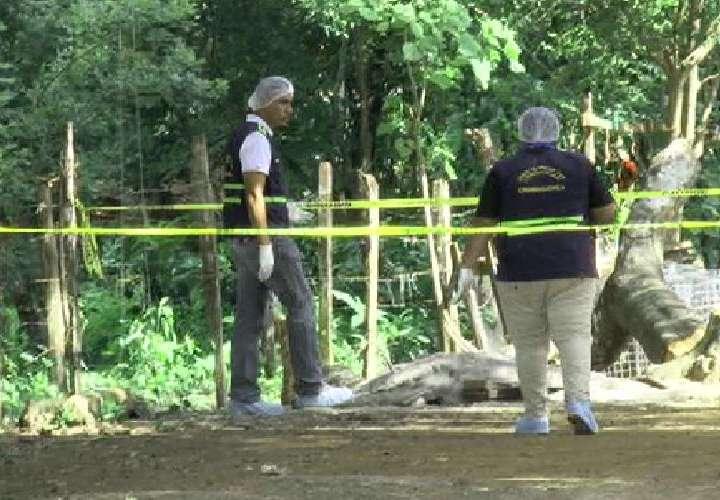 Unidades policiales dieron con la captura del presunto homicida de Alberto Bejerano, de 83 años.