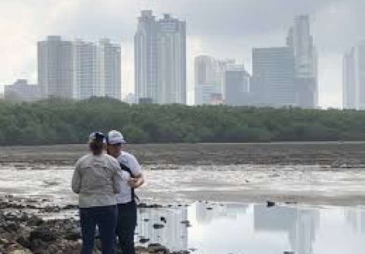Para el 2022 se podrán bañar en playas de Cinta Costera