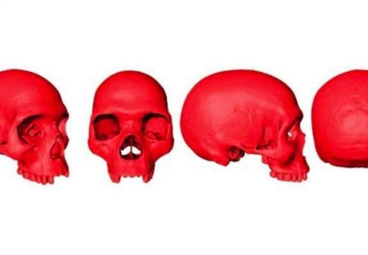 Para los investigadores, este es un cráneo