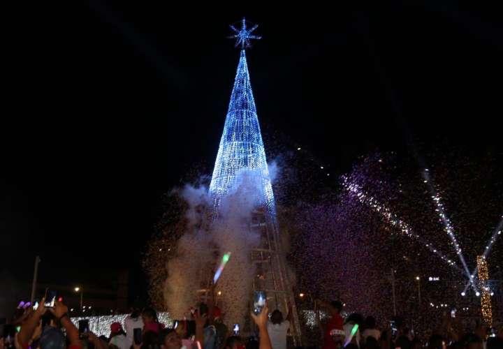 Árbol de Navidad gigante ilumina la Cinta Costera (Video)