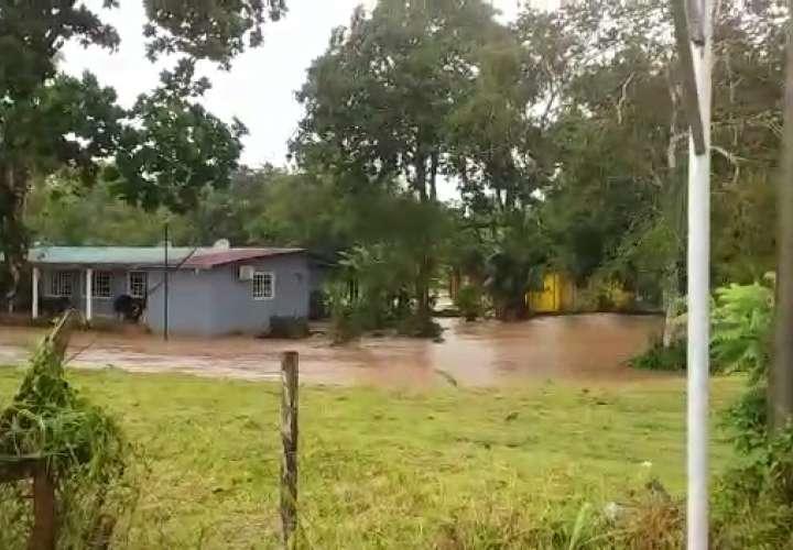 Fuertes lluvias causan inundaciones y caída de árboles