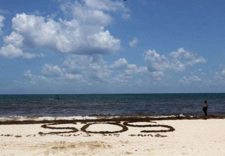 El cambio climático mermará el oxígeno de los océanos hasta un 4 % en 2100