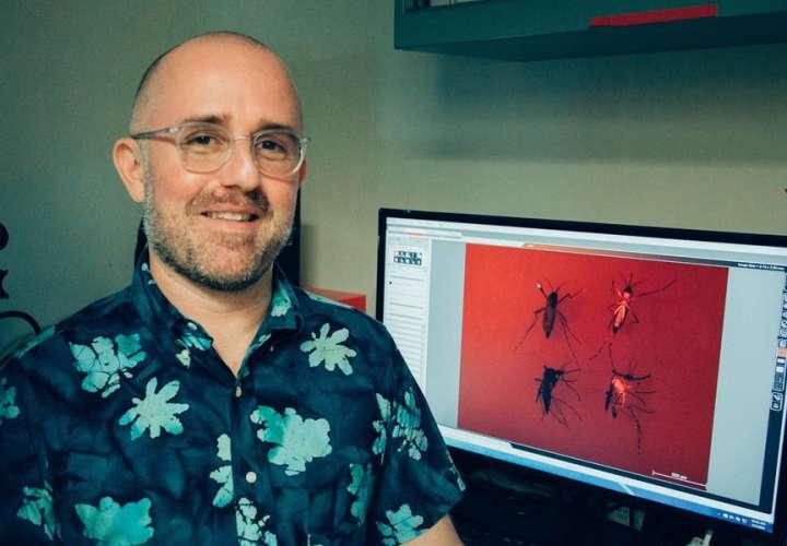 Desarrollan sistema para controlar mosquitos con cebo con olor a lluvia