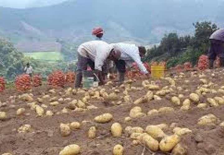 Productores de Tierras Altas solicitan albergue para atención de contagiados