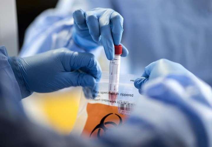 Científica escocesa identificó el primer coronavirus humano en 1964