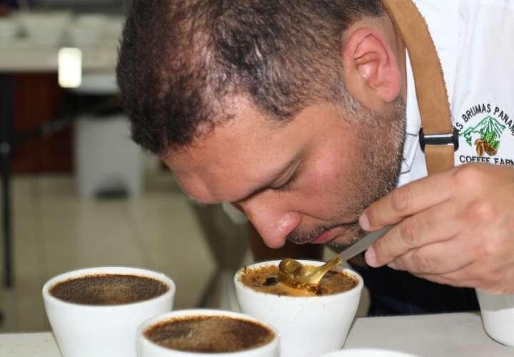 Cafés Geishas, los más gustados por jueces nacionales en el Best of Panama