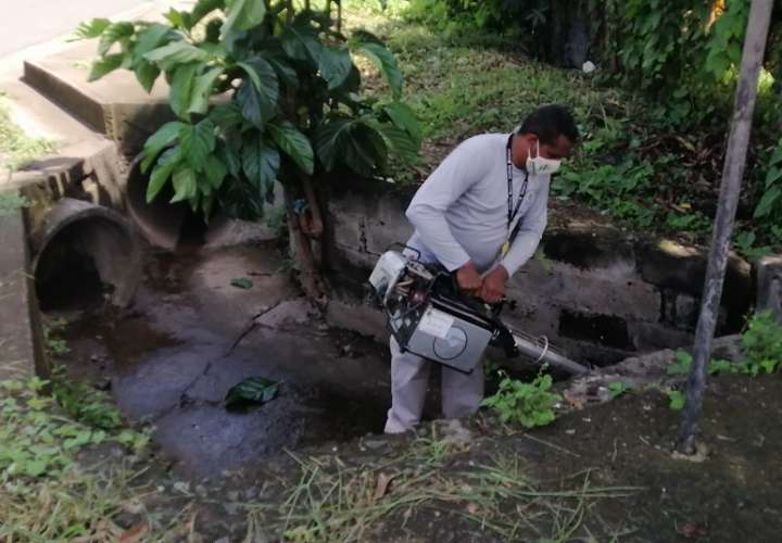 Realizan operativo para detección de criaderos de dengue en Chitré
