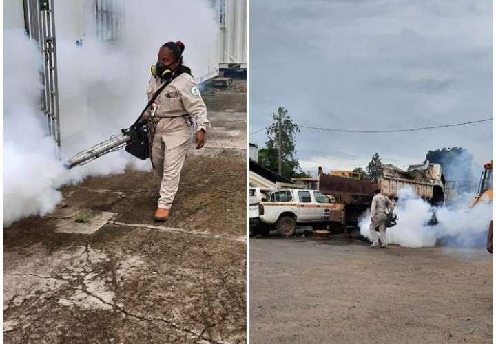 ¡Ojo! Aumentan casos de dengue