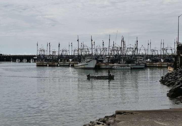 El país cuenta con más de 7 mil barcos y 243 embarcaciones con bandera panameña en aguas internacionales con licencia de pesca.