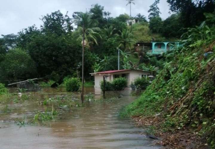 Inundaciones, caídas de árboles y colapso de muro deja paso de onda tropical