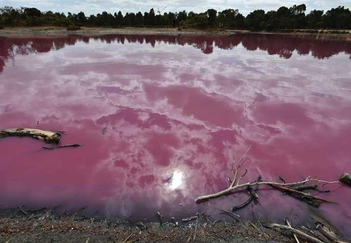 El lago rosa del parque de Westgate, este martes, en Melbourne (Australia). EFE