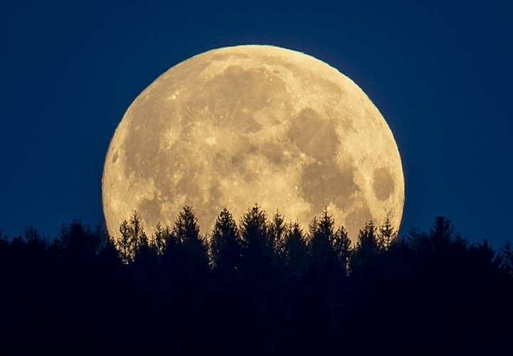 Agencia espacial: orina humana podría ayudar a hacer concreto en la luna