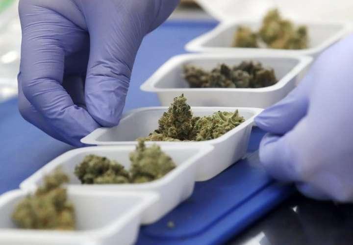 Científicos estudian los brownies con marihuana para determinar si son ilegales