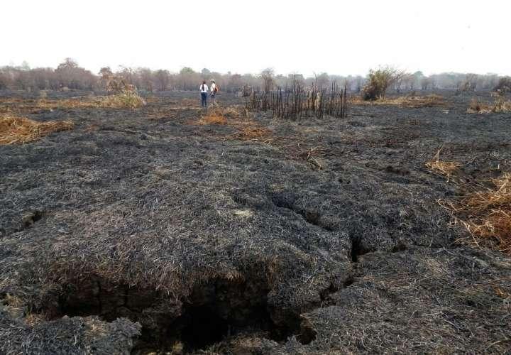 Vistas de un área deforestada y quemada en Filo Del Tallo, Darién del año 2016. Foto: MiAmbiente