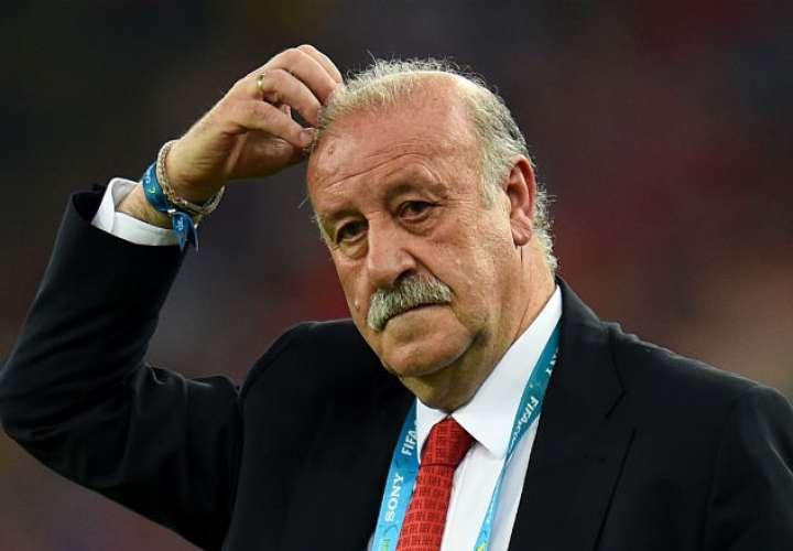 Del Bosque dice que España 'pinta muy bien' para el Mundial de Rusia 2018