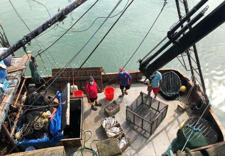 Las embarcaciones ¨América¨ y ¨San Nicola¨ fueron detenidas en Antón, en un operativo realizado en conjunto entre el SENAN y la ARAP.