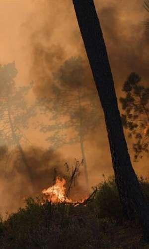 Vista de las llamas en un incendio forestal declarado en el distrito de Castelo Branco (Portugal) . EFE
