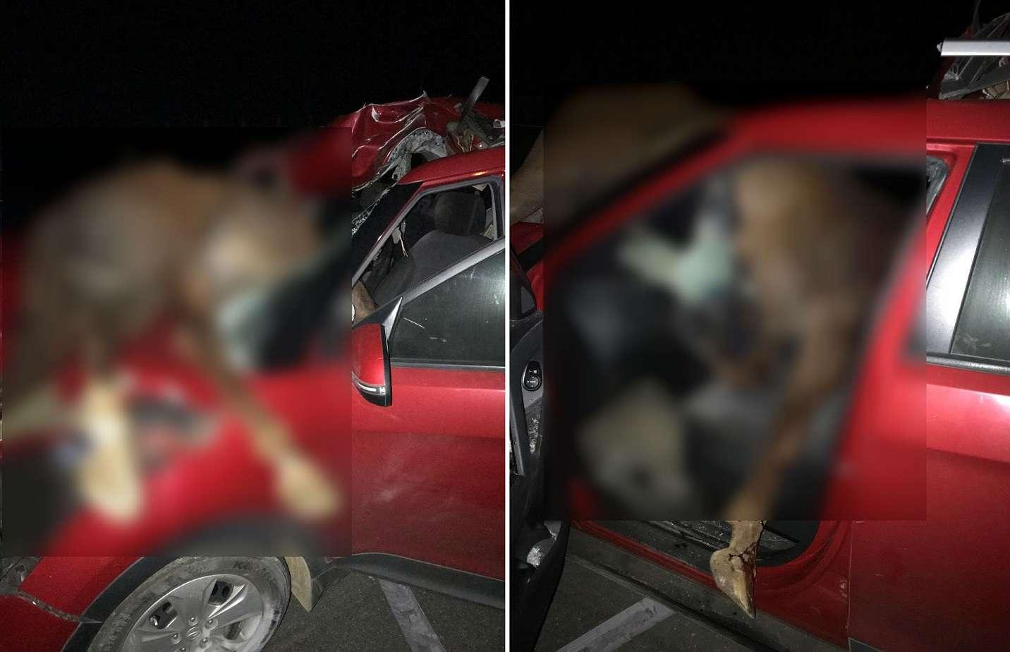 Vista general de la escena del accidente en Chiriquí. Fotos: Mayra Madrid