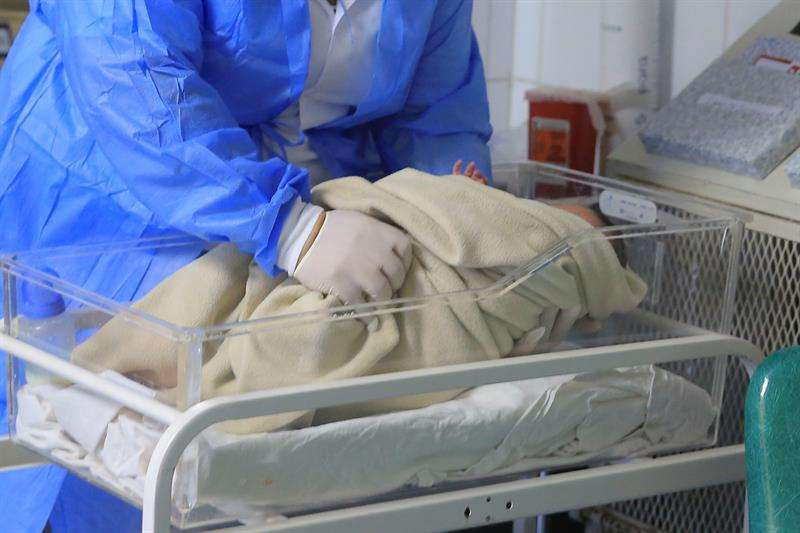 un útero trasplantado a partir de una donante fallecida, que podría aumentar las opciones de concebir para las mujeres con problemas de fertilidad uterina. EFE/Archivo