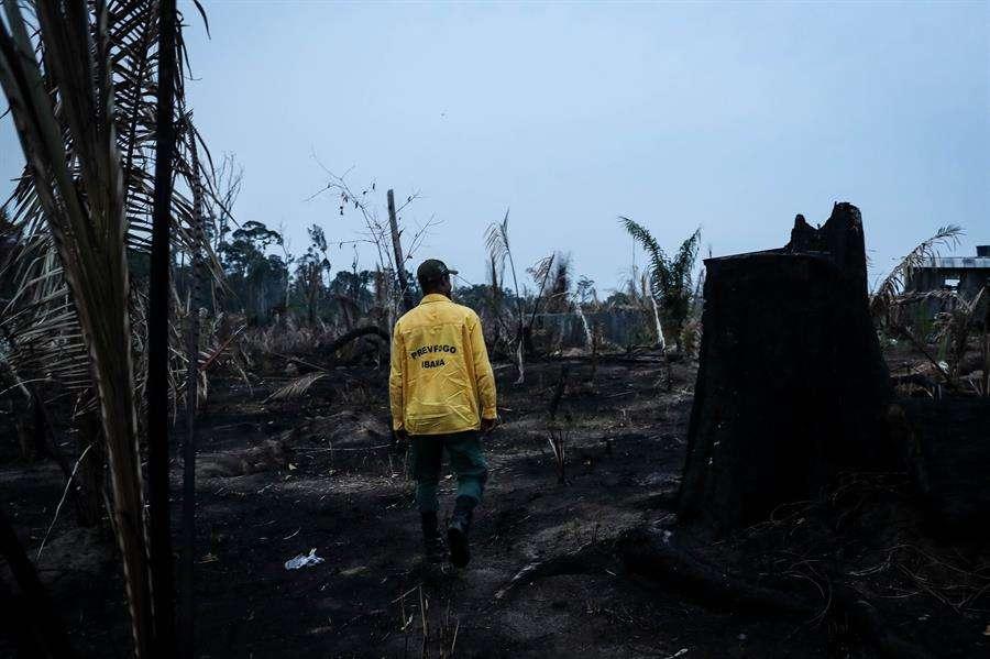 Bomberos del Prevfogo del Ibama hacen una ronda en la Amazonía. EFE